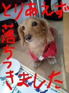 Pa0_0367_2